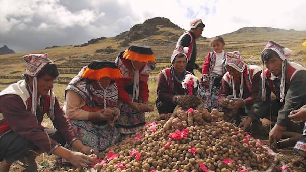 levné letenky Lima Peru